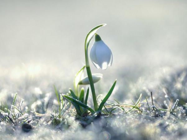 День весняного рівнодення: «некалендарне» закінчення зими і прихід весни