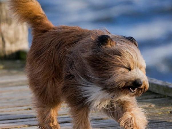 Волинян попереджають про похолодання та сильний вітер