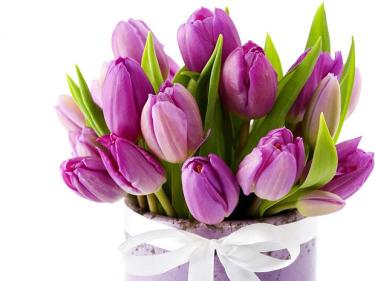 Свята, іменини, дати: що святкують 25 березня