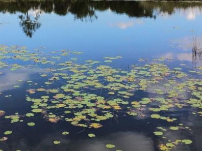 У Локачинському районі обстежували населені пункти на наявність перепон у водопровідних системах