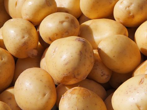 кооператив з вирощування картоплі.