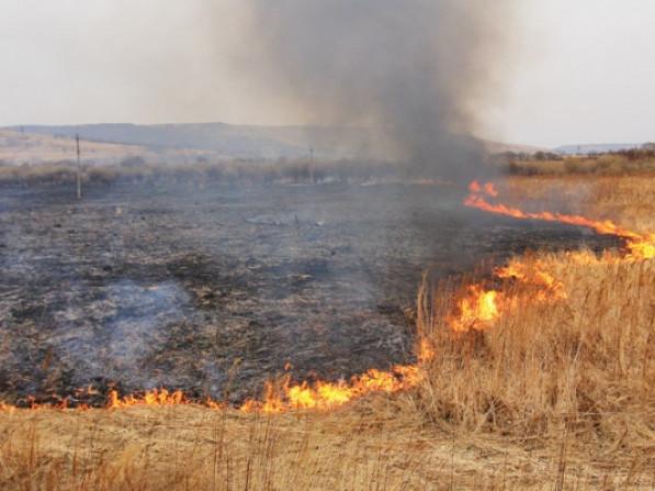 За випалювання рослинності передбачена адміністративна та відповідальність