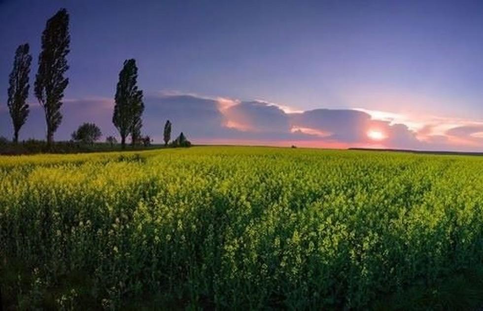Показали красу Локачинського краю