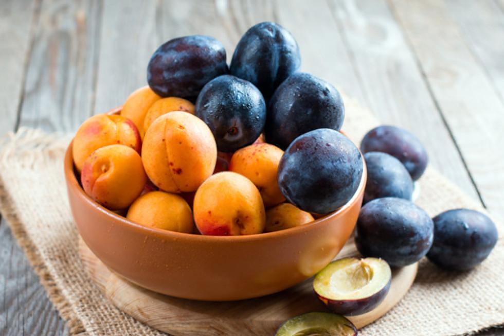 абрикоси та сливи