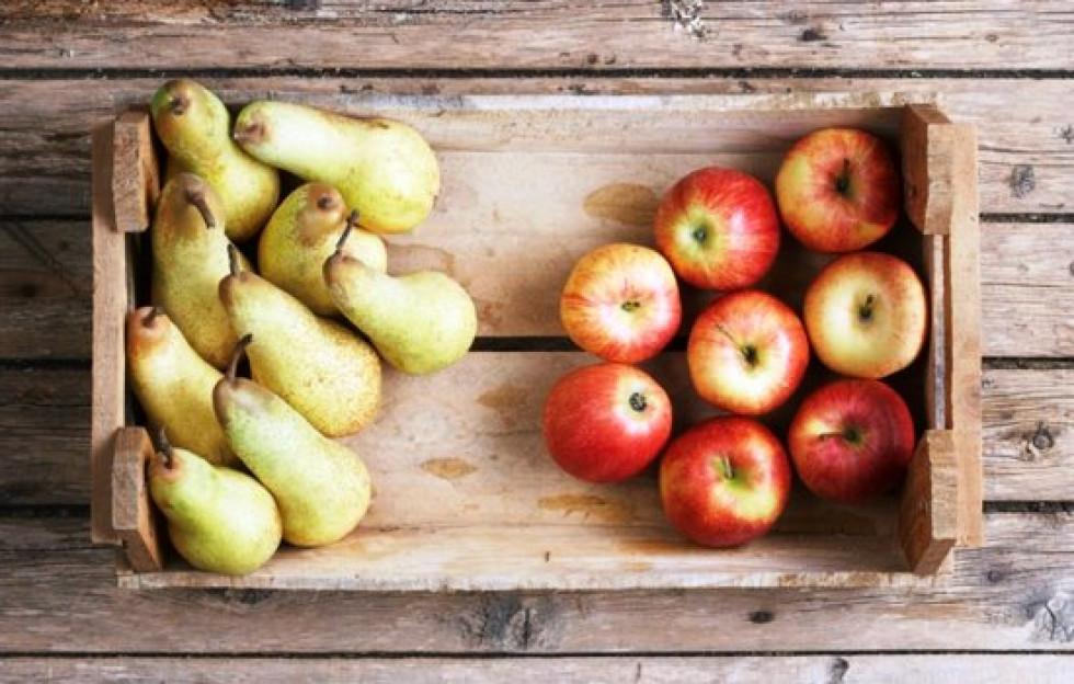 яблука та груші