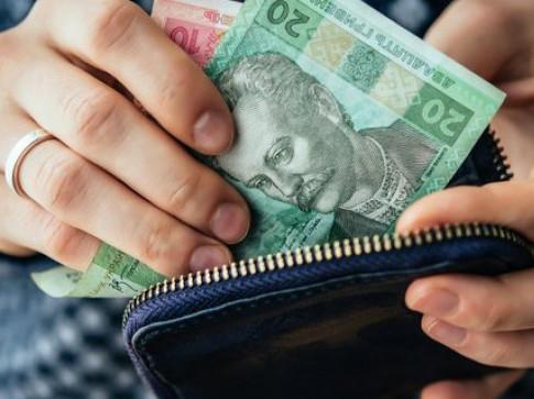 Як працює монетизація субсидій